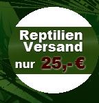 günstiger und zuverlässiger Reptilienversand mit Tierspedition nur 25,- Euro