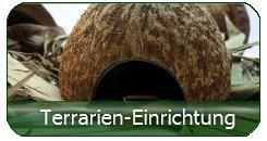Terrarien-Einrichtung günstig online bestellen