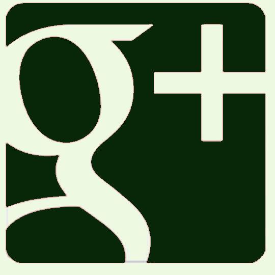 Besuchen Sie MD-Terraristik bei Google Plus