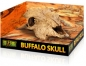 Preview: Buffalo Skull Versteckhöhle